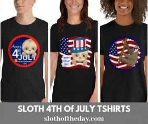 Sloth Happy 4th Of July T-shirts – 5 Unique Designs