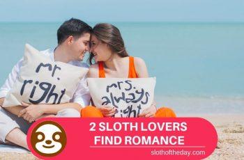 2 SLOTH LOVERS Find Sloth Love Together