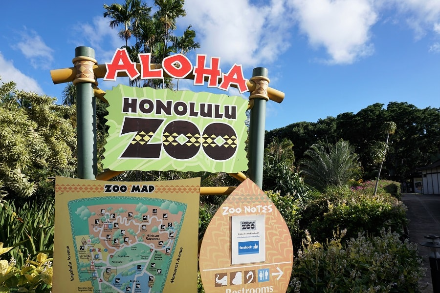 Honolulu-Zoo-Sign-Do Sloths Live in Hawaii