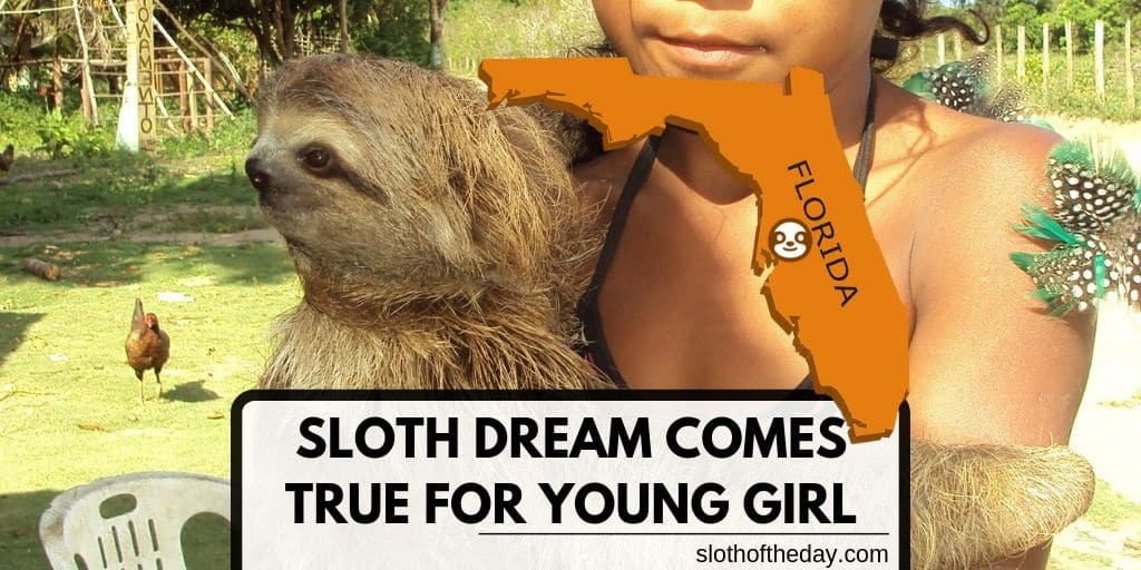 SLOTH DREAM COMES TRUE FOR YOUNG GIRL