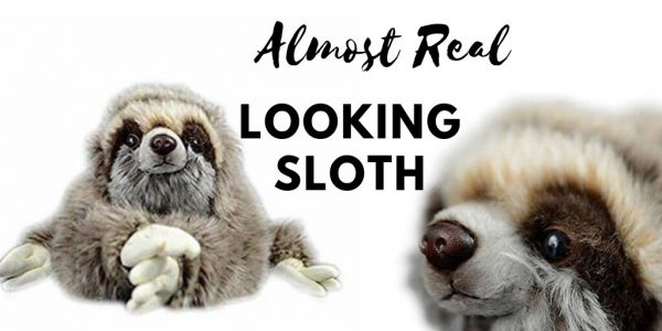 12.5 inch Realistic Looking Sloth Toy Three-Toed Sloth