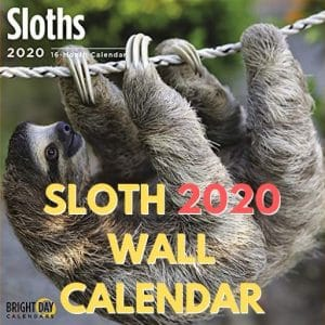 2020 Sloth Wall Calendar 16 Month 12 x 12 Wall Calendar Feature