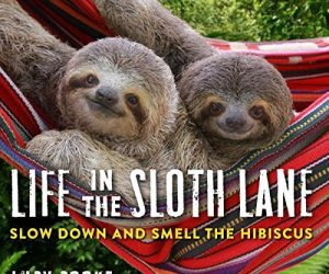 New Life in the Slow Lane Sloth Book