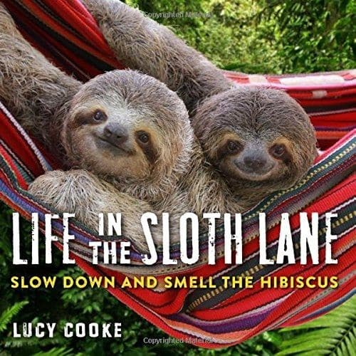 Life In The Slow Lane Sloth Book by Lucy Cooke