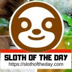 Brown Sloth Hanging on Tree on Dark Background - Floral Sloth Girls Long Wallet Bag