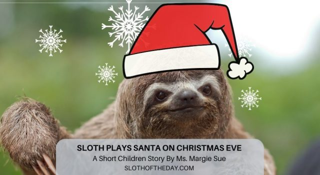 Sloth Plays Santa on Christmas Eve A Short Children Story Sloth of The Day