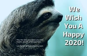 Sloth of The Day Wishes You a Very Happy 2020