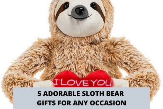 5 Adorable Sloth Bear Gifts For Any Occasion Social