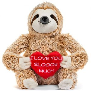 Cute Sloth I Love You Slooow Much Sloth Teddy Bear Gifts