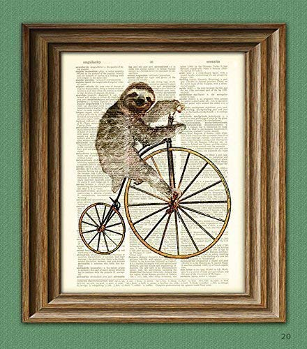 Sloth on a Penny Farthing Bicycle Book Art Print