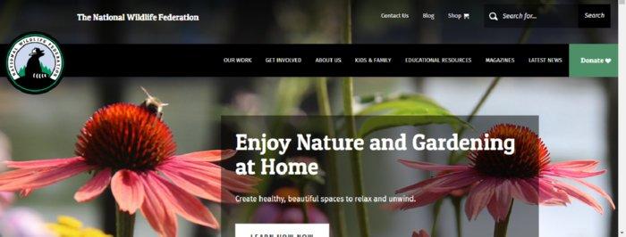 The National Wildlife Federation Sloth Adopting Center
