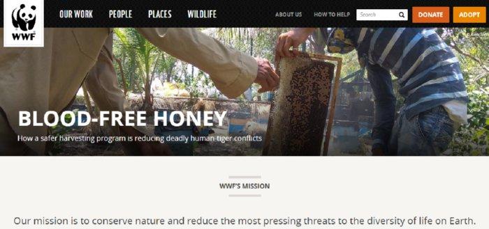 World Wildlife Fund Adopt a Sloth Program