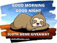 Good Morning Good night Sloth Meme Giveaway