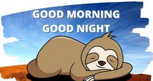 Good Morning Good night Sloth Meme Giveaway
