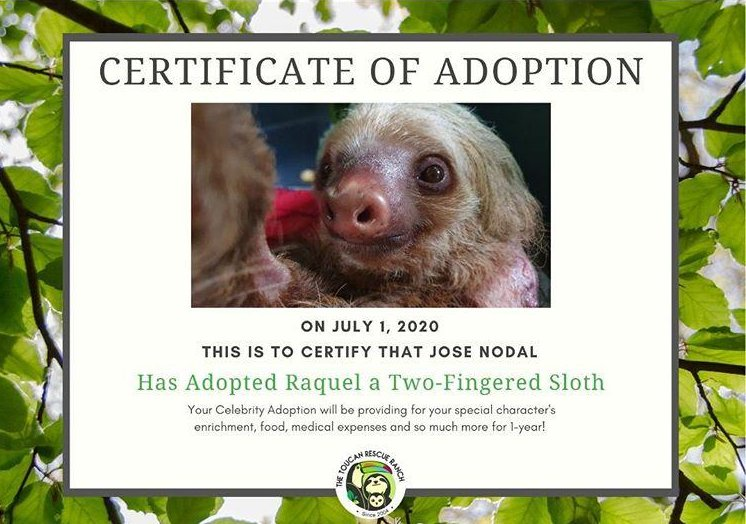 Sloth Certificate of Adoption