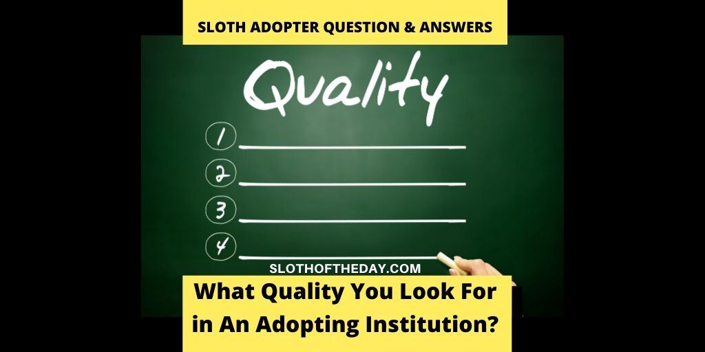 What Qualities Do You Look For When Choosing an Adopting Institution