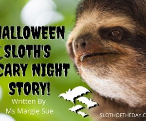 Halloween Sloth's Scary Night Story by Ms Margie Sue