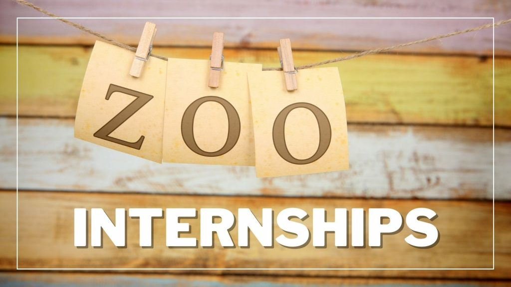 Internships at the Red River Zoo