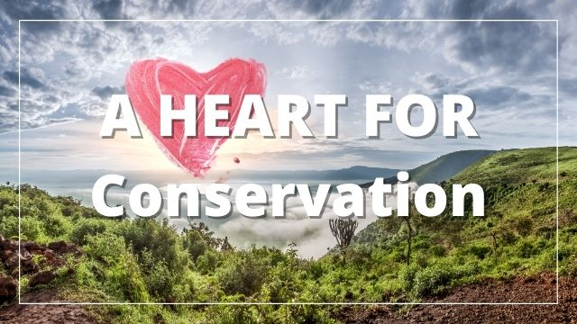 A Heart for Conservation