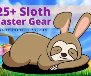 25+ Amazing Sloth Easter Gear Ideas for Sloth Lovers