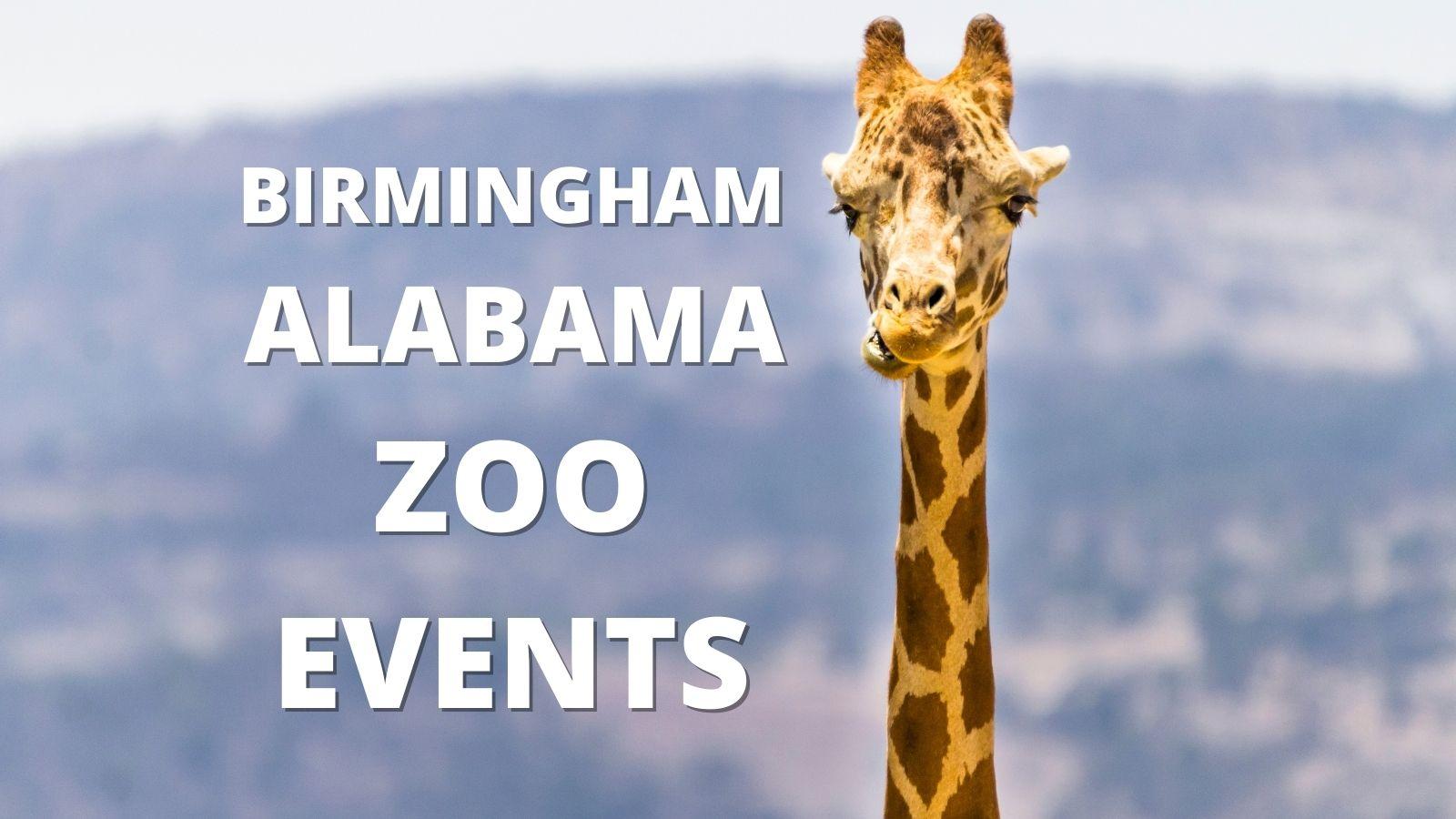 Birmingham Alabama Zoo Events