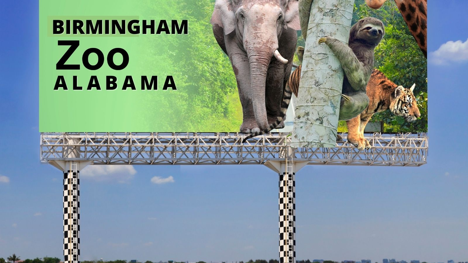 How Did the Birmingham Alabama Zoo Begin