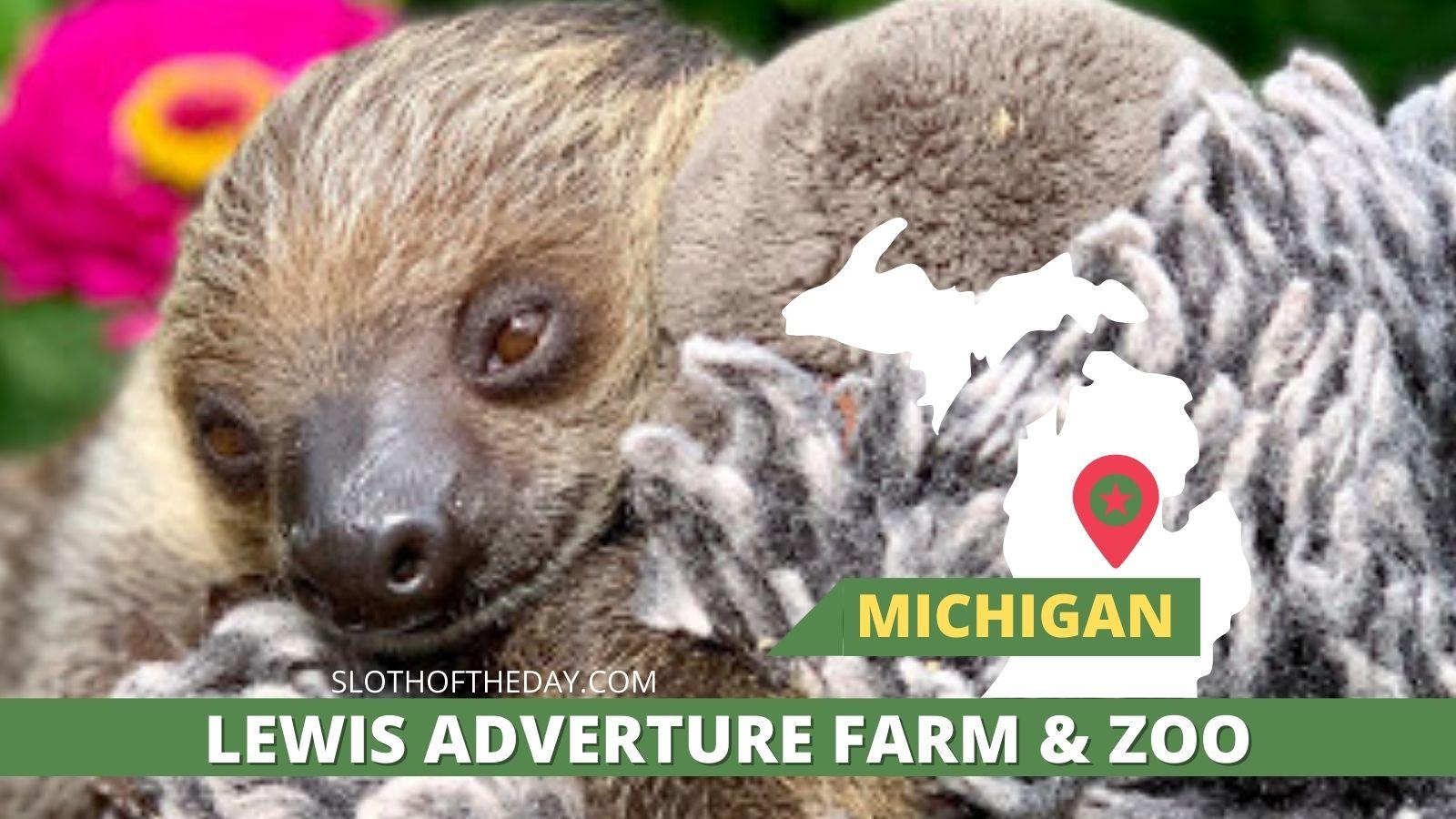 Sid the Sloth Lewis Adventure Farm and Zoo Michigan Sloths